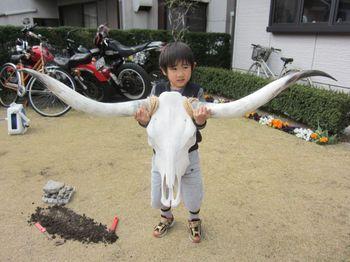 萌えSkull_03.jpg