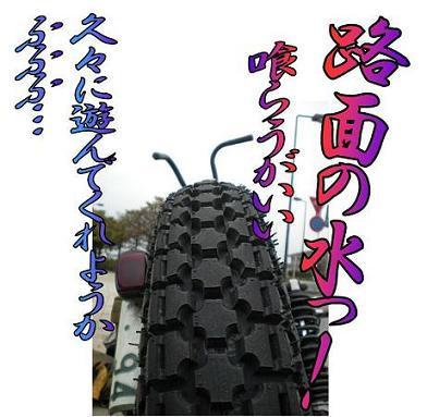 ライダー兄弟_04.jpg